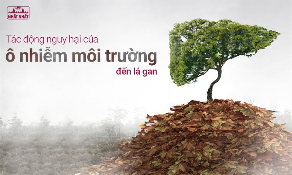 Tác động nguy hại của ô nhiễm môi trường đến lá gan
