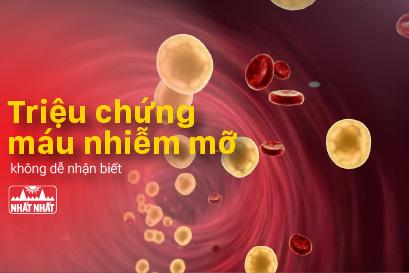 Xác định các triệu chứng bệnh máu nhiễm mỡ để điều trị chính xác