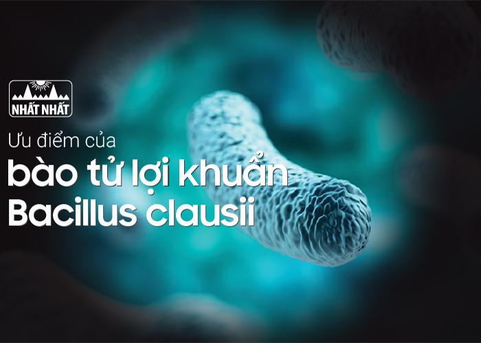 Những ưu điểm của bào tử lợi khuẩn Bacillus clausii trong men vi sinh Bio Vigor