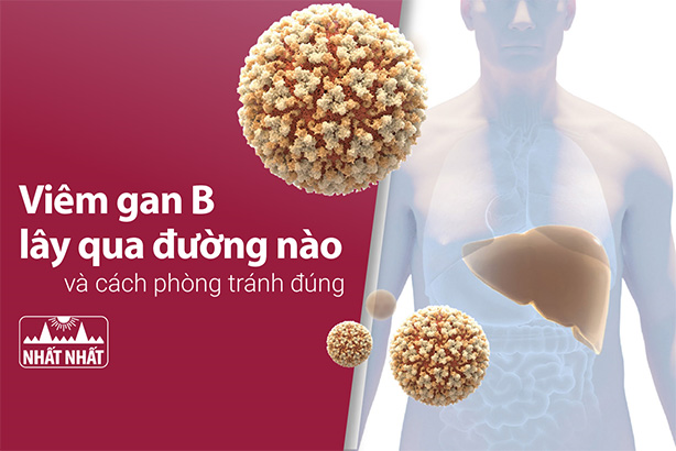 Viêm gan B lây qua đường nào và cách phòng tránh đúng?