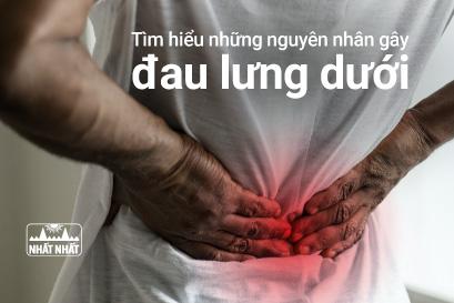 Tìm hiểu những nguyên nhân gây đau lưng dưới