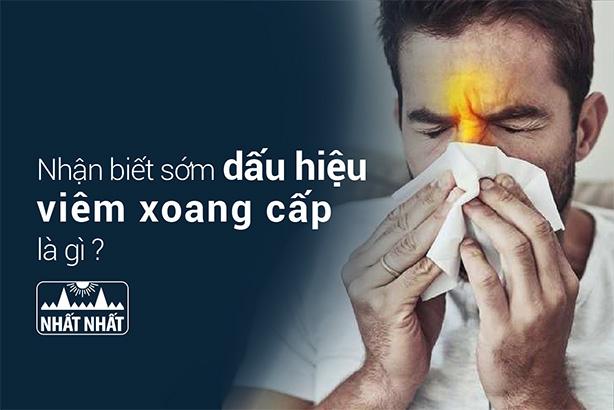 Nhận biết sớm dấu hiệu viêm xoang cấp là gì để xử lý kịp thời