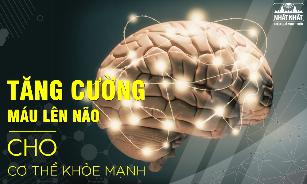 Tăng cường máu lên não cho cơ thể khỏe mạnh